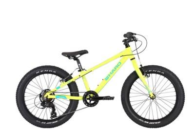 Haro Flightline 20 Plus Mountain Bike