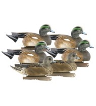 Greenhead Gear Hunter Series Life-Size Wigeon Decoys 6-Pack