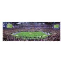 Masterpieces Puzzle Co. Minnesota Vikings Panoramic 1000 Piece Stadium Puzzle