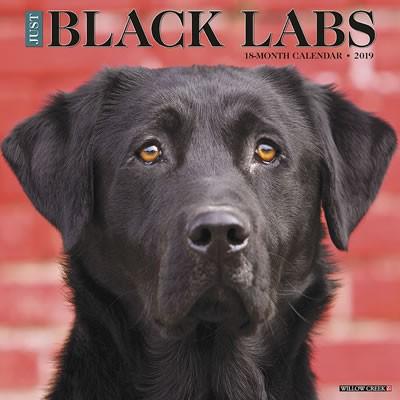 Just Black Labs 2019 Calendar