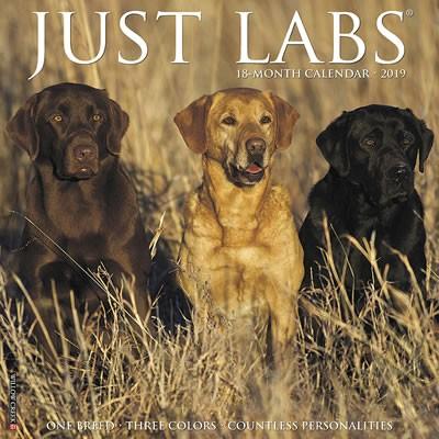 Just Labs 2019 Calendar