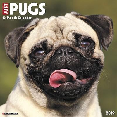 Just Pugs 2019 Calendar