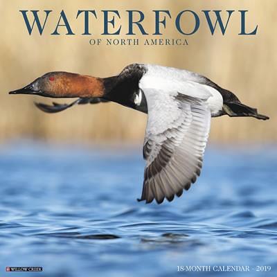 Waterfowl 2019 Calendar