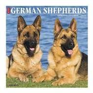 Willow Creek Press Just German Shepherds 2020 Wall Calendar