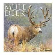 Willow Creek Press Mule Deer 2020 Wall Calendar