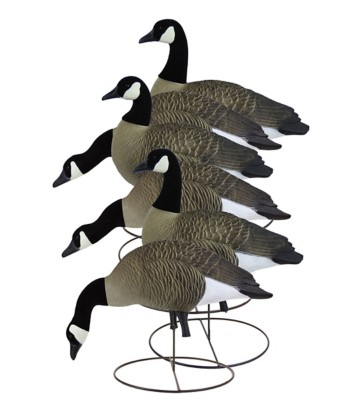 Higdon Full Size Canada Goose Variety Decoys 6-Pack
