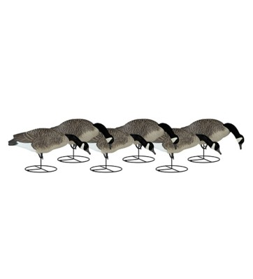 Dakota Decoy Canada Goose Full Body Flocked Feeder 6-Pack' data-lgimg='{