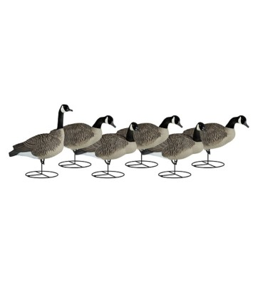 Dakota Decoy Full-Body Flocked Canada Goose Decoys 6-Pack