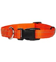 Petmate Padded Reflective Dog Collar