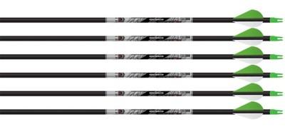 Beman ICS Hunter Classic 340 Arrows
