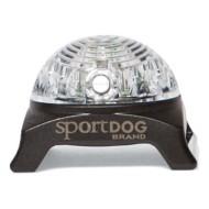 SportDOG Locator Beacon for Collar Strap