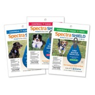 Spectra SHIELD Medallion for Dog Collars