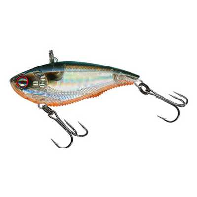 Prism Tennessee Shad