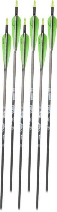 Scheels Outfitters Rogue Arrows by Gold Tip