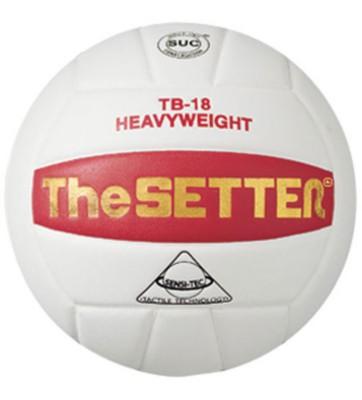 Tachikara The Setter Volleyball