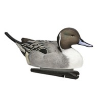 Avian-X Top Flight Pintail Decoys 6-Pack