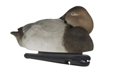 Avian-X Topflight Canvasback Duck Decoys 6-Pack