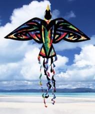 Skydog Tie-Dye Bird Kite