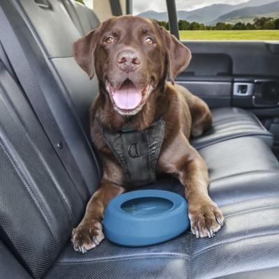 Kurgo Splash Free Wander Dog Water Bowl