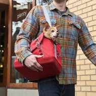 Kurgo K9 Courier Dog Carrier