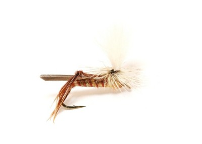 Rivers Wild Parachute Fly