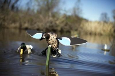 MOJO Outdoors Blue Wing Teal Motorized Decoy