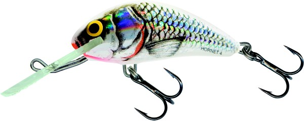 Silver White Shad