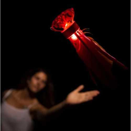 Waboba LED Flyer