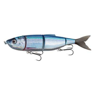 Sexy Baitfish