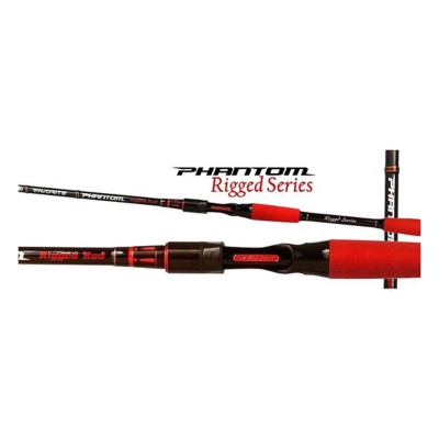 Favorite Fishing Rigged Casting Rod
