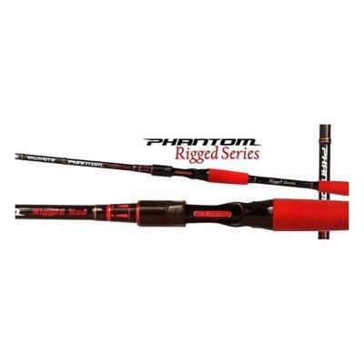 Favorite Fishing Rigged Phantom Casting Rod