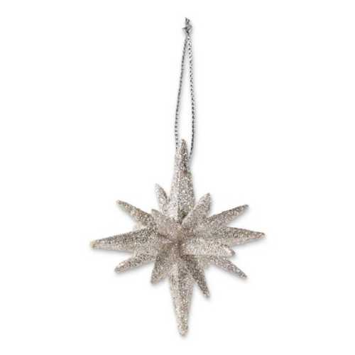K&K Interiors Point Silver Glittered Star Ornament