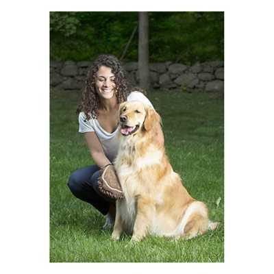 Dog Gone Grooming Mitt