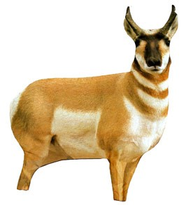Montana Decoy Antelope Decoy