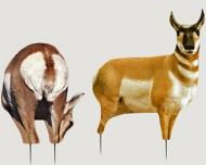 Montana Decoy Eichler Antelope Buck & Doe