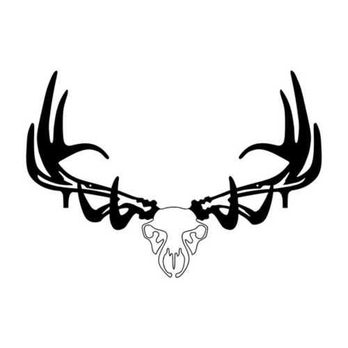 Raxx Elk Bow Rack