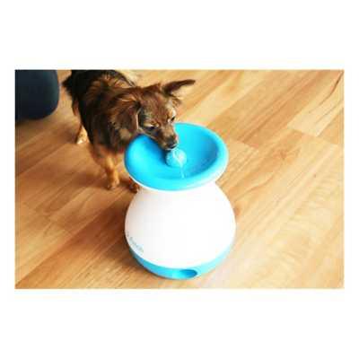 iFetch Frenzy Dog Toy