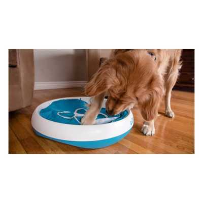 iFetch iDig Stay Dog Toy