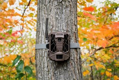 Spypoint LINK-EVO Verizon Cellular Trail Camera