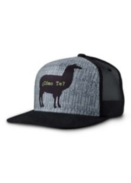 Men's prAna Journeyman Trucker Hat
