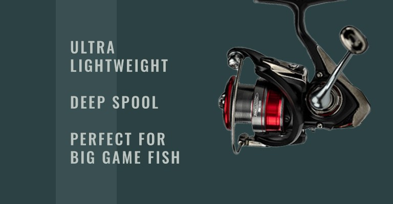 Scheels Outfitters Pro Classic Spinning Reel by Daiwa: ultra lightweight, deep spool, and perfect for big game fish