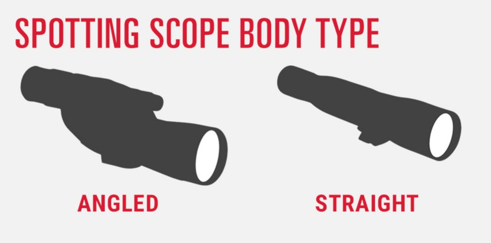 Spotting Scope Body Type - Angled vs. Straight