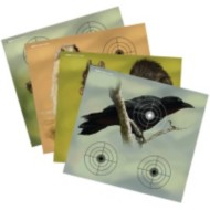 "Varmint Paper Target Full Color 9.75"" x 9"""