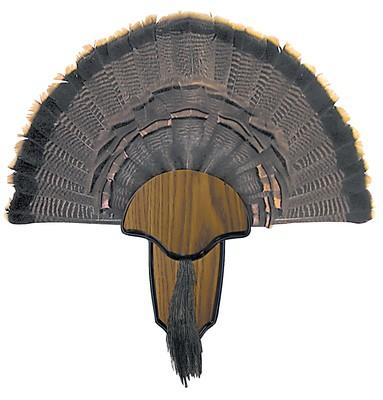 Hunters Specialties Turkey Tail/Beard Mount Kit' data-lgimg='{