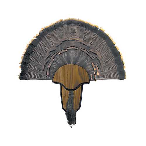 Hunters Specialties Turkey Tail/Beard Mount Kit